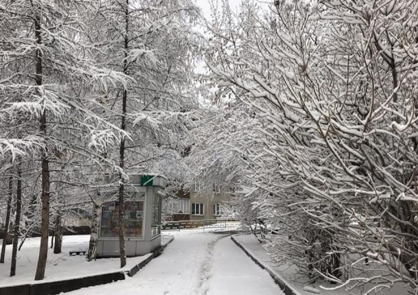 В Красноярск пришел снег